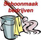 logo schoonmakers op ameland
